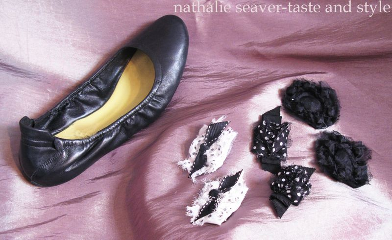 Shoe and clips copy