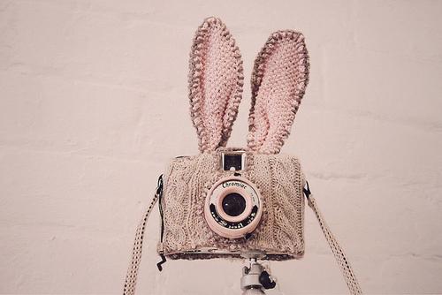 Bunny camera